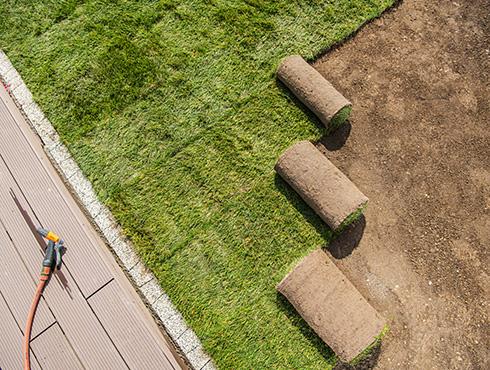Rasenarbeiten & Pflege